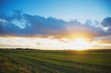 A new dawn for Innovative Finance ISAs