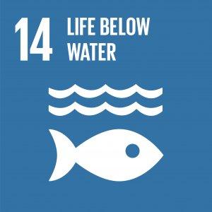 UN SDG 14 Life below water